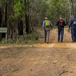 Ironbark Walking Track
